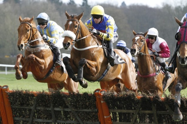 Lingfield Jumps