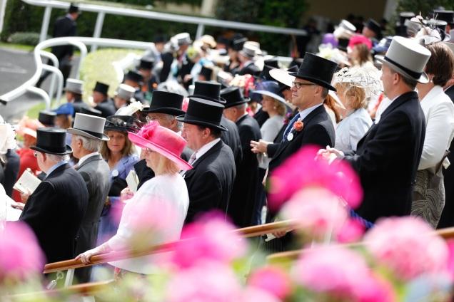 Ascot day 3 2016 Hats parade ring.jpg