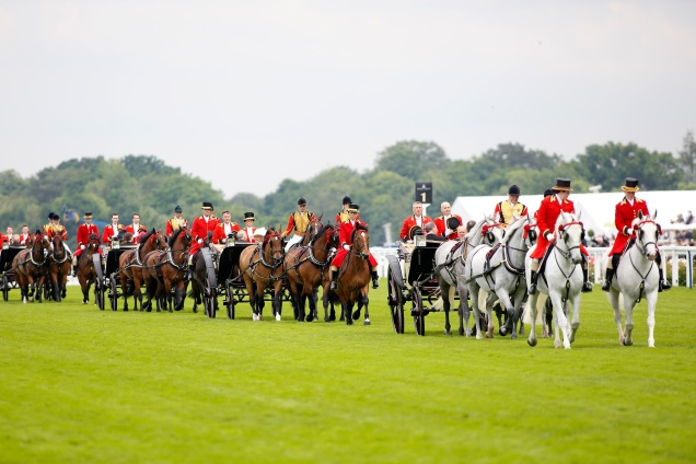 Ascot Day 4 2016 Carriages.jpg