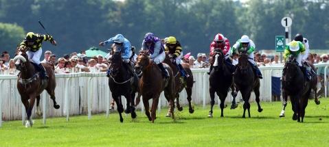 Windsor Races