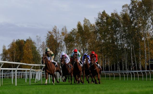 Leicester races.jpg