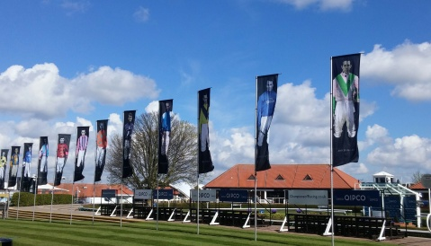 newmarket-flags-2016-mine