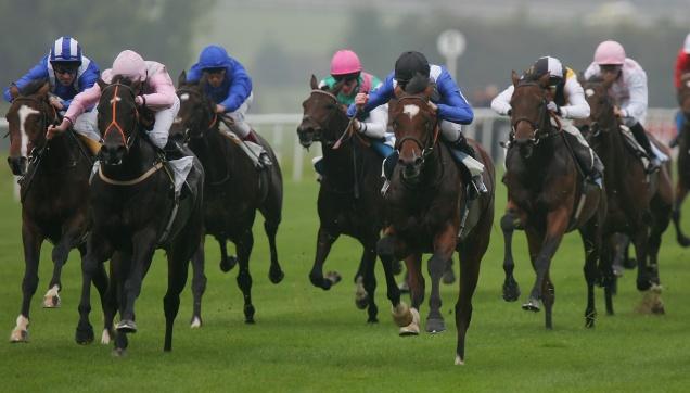 Leicester races 2.jpg