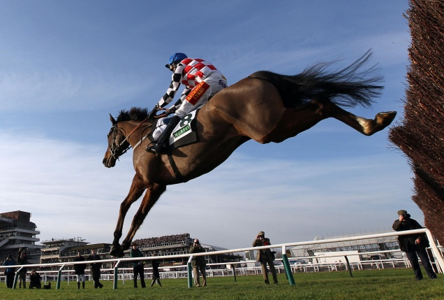 Horse Racing - Festival Trials Day - Cheltenham Racecourse
