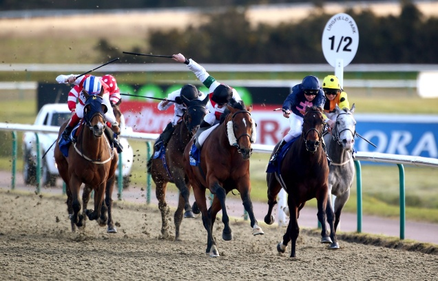 Lingfield all-weather 2.jpg