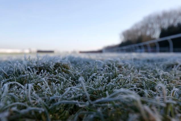 Frost 5.jpg