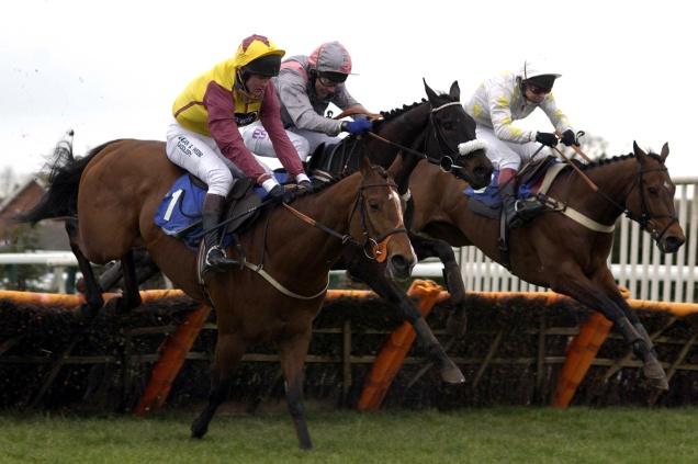 Hereford Racing X