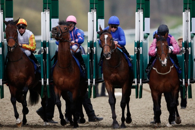 Lingfield all-weather 3.jpg